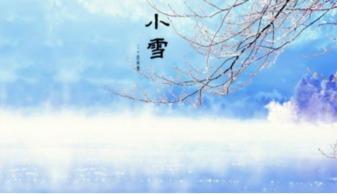 精选关于小雪的诗句说说 云暗初成霰点微