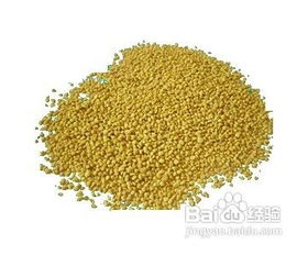 荷花粉(粉需要服用6个月以上)