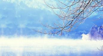 大雪节气,品读雪花里的诗句