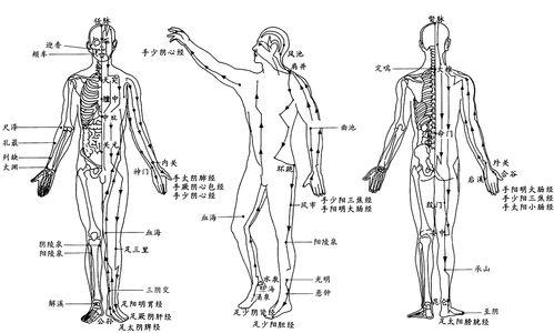 身体有个万能穴,滋养五脏,祛除顽疾,延年益寿  按摩命门的功效作用