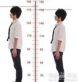 17岁青少年身高体重标准