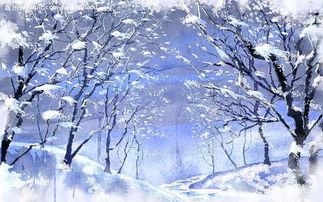 描写松树冬天的好段