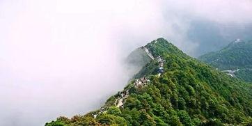 深圳八景 深圳八景哪些 什么是深圳八景 深圳八景最好玩的