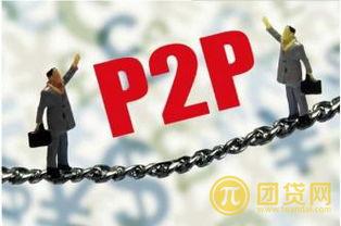 小额网贷款(p2p网络借贷和小额)