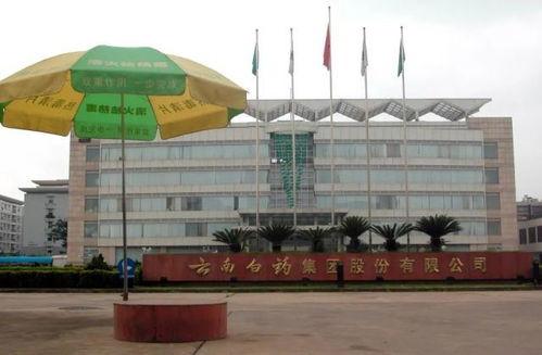 云南白药,上海机场这两支股票怎么样?