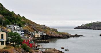 纽芬兰旅游攻略