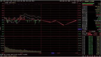 公司开立股票账户有什么要注意的?