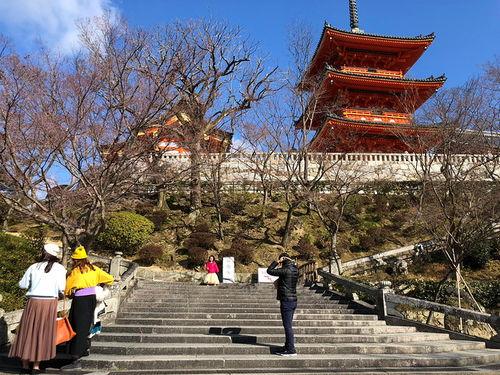 日本奈良自由行攻略