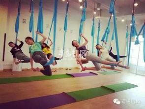 青岛有树瑜伽 3天空中瑜伽培训第5期等你来 3天只收500元...