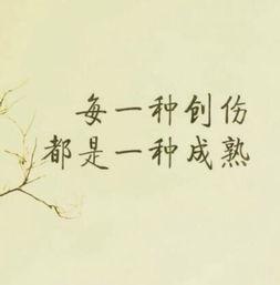 人生感悟的句子正能量短句