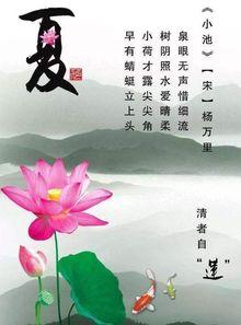 关于莲花廉洁的著名诗句