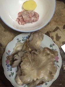 蘑菇肉沫汤的家常做法大全