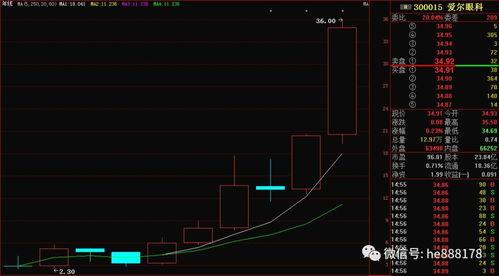 股票 收市前大手买入 什么意思
