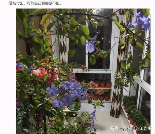47岁男人喜欢养花