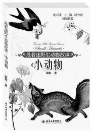 衡水作家刘兴华着 最着迷野生动物故事 系列图书出版