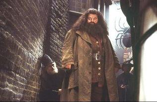 Harry Potter详细介绍和人物名称中英文对照及其介绍