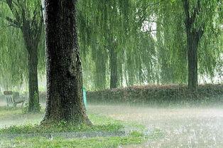 制作阴天雨景效果