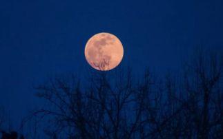 有关月亮的诗词千句