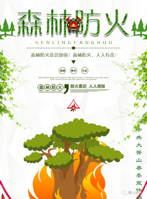 森林防火小知识小学生(搜小学生森林防火小常识10句话每句20个字)