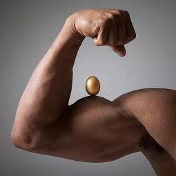 健身的蛋白补充时间