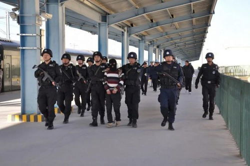 青海警方破获19年前命案积案