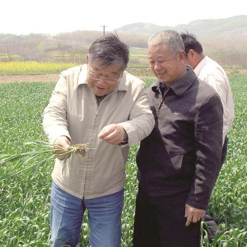 赵亚夫到田间地头指导农民生产
