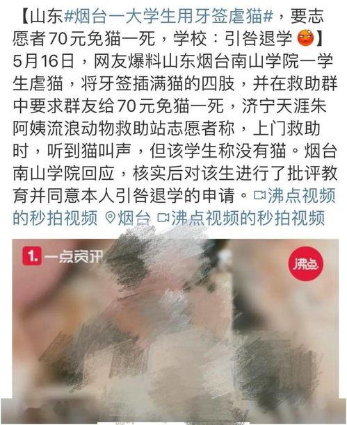烟台大学生牙签虐猫事件(图自网络)厦门虐猫事件(图自网络)我们无法保证范源庆虐猫事件之后,更多虐待动物的事件相继被爆出来。(