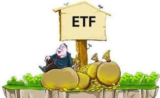 场内买etf基金的技巧(ETF基金 场内的如何选 择 看什么?)