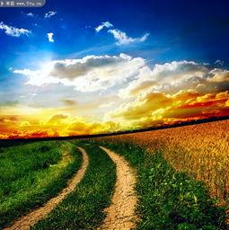 乡间小路图片 自然美景大图