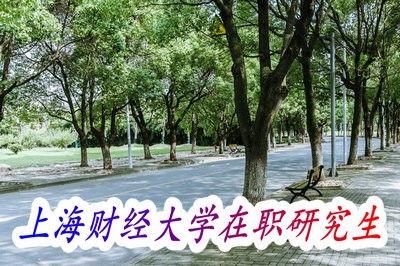上海哪些大学可以专升本在职读 学校大全