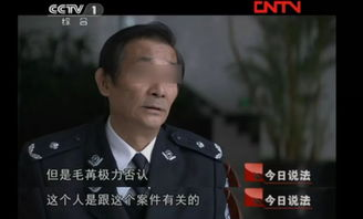最后,男友逃到国外逍遥法外,毛苒被判了死刑4法官说法2008年夏天,毛苒与外籍男子obi成为了男女朋友。