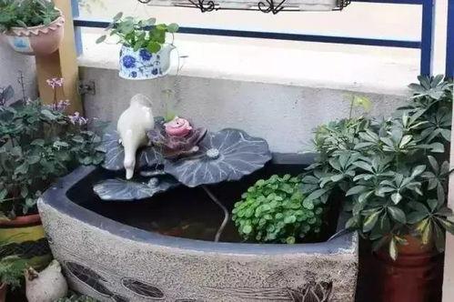 封闭阳台养鱼养花