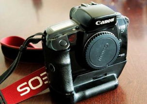 佳能相机为什么只能对焦不能拍照