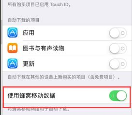 iphone怎么用流量更新(iphone怎么用流量更新系统)