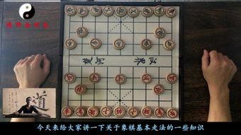 象棋新手入门(象棋怎么玩新手入门)