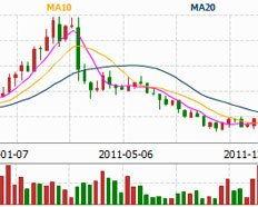 中国股市的几大妖股有哪些???????????
