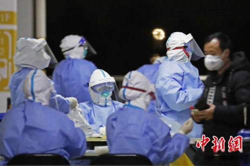 上海浦东国际机场连夜组织集体核酸检测