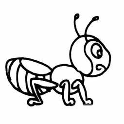 简单的卡通小蚂蚁简笔画图片