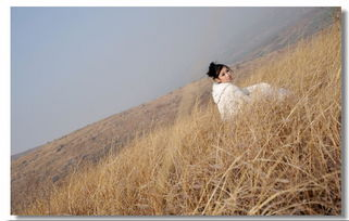 有关沙漠边关草原美女的诗词