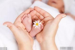 2、宝宝大脑发育的第二个阶段发育的第二个时间段,大概是在12到18周的时候.