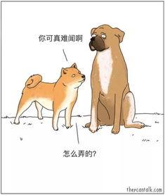 动物的心声的话语