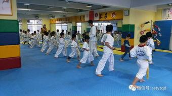 跆拳道考试自我介绍