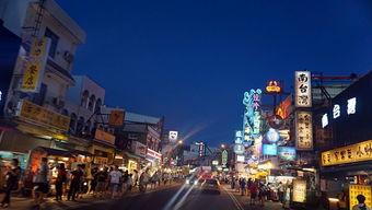 非自由行城市台湾