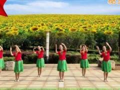 芯春英广场舞我和我的祖国