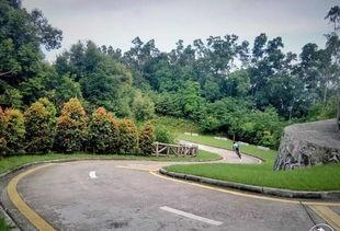 【深圳免费景点篇】塘朗山郊野公园游玩攻略