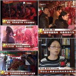 人大代表孙小荔屠宰销售狗肉,均是违法行为呼吁立法保护动物