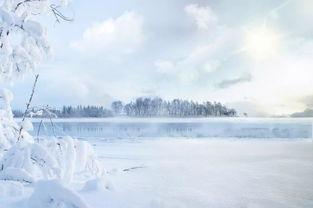 关于雪的诗句4首