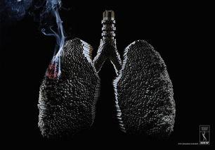 美国戒烟运动兴起 为健康开始戒烟吧