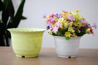 剩咖啡能能到花盆养花吗