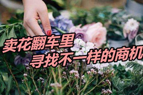 罗永浩卖花翻车,赔了100多万,创业者们从中寻找致富商机